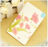 Credit-Card-Type-Mobile-Power-Bank-2500mAh-2500
